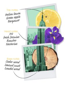let's-travel-to-new-york-olfactive-notes