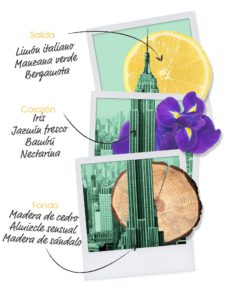 let's-travel-to-new-york-ingredientes-mujer