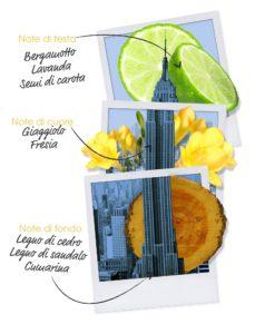 piramide-olfattiva-let's-travel-to-new-york-uomo