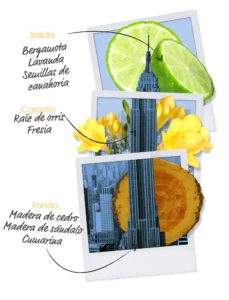 let's-travel-to-new-york-ingredientes-hombre