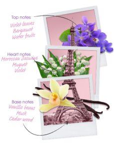 ingredients-let's-travel-to-paris-woman