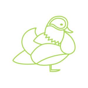 duck-green